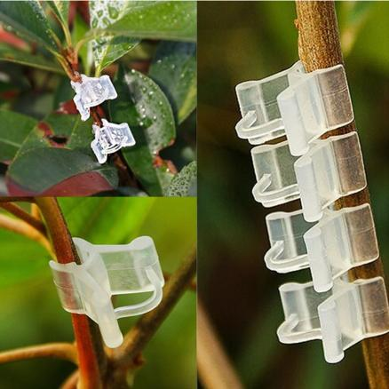 50/100pcs Plastic Plant Support Clips For Tomato Eggplant Plants Grafting Clip Fixed Greenhouse Vegetables Garden Ornament