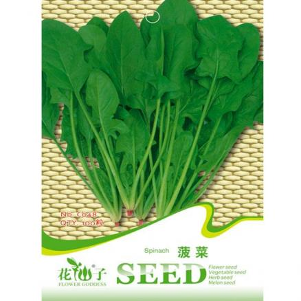 100pcs Garden Spinach Seeds Salad Leaves Vegetable