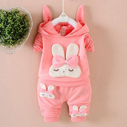 Cartoon Bunny Pattern Hooded Set (3785249)
