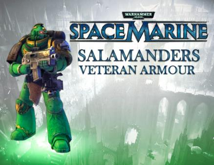Warhammer 40,000 : Space Marine - Salamanders Veteran Armour Set DLC (PC)